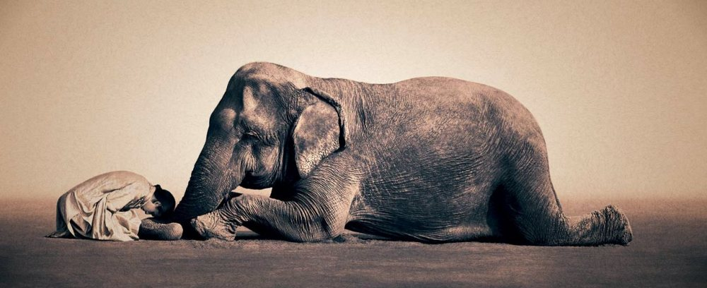gregory-colbert-14.jpeg (1000×408)